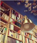 Negozio di Libreria Utopia Pratica